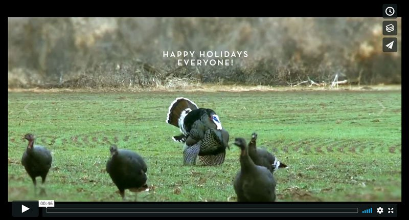 Happy Holidays! Thanksgiving – Part I