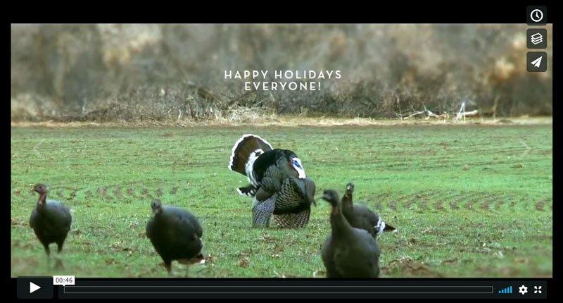 Happy Holidays! Thanksgiving – Part I